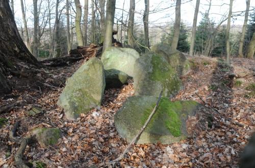 Resterne af Fledskov-dyssen