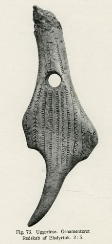 img529