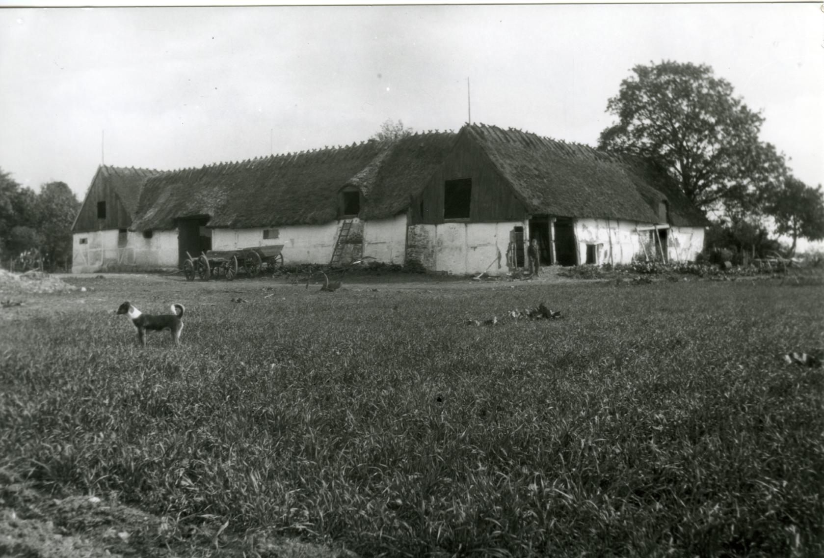 Billede 15 Tjørnholm, Østrupvej 118 - Gården brændte ved den store brand i Ugerløse 1824. Samme år genopførtes den som en firlænget stråtækt gård med indkørsel gennem en stor port. Portlængen blev nedrevet i 1930 og genopbygget samme sted som kostald og kornlade. (kilde G. Christiansen).