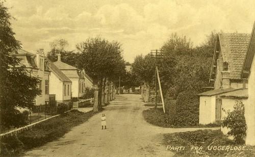 Bonderupvej ca. 1915 - Billede 8 Bagerst bag træerne gemmer præstegården sig.