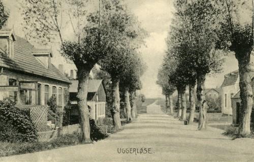 Bonderupvej ca. 1905 - Billede 9 Yderst th. skimtes Annexgården, Bonderupvej 14