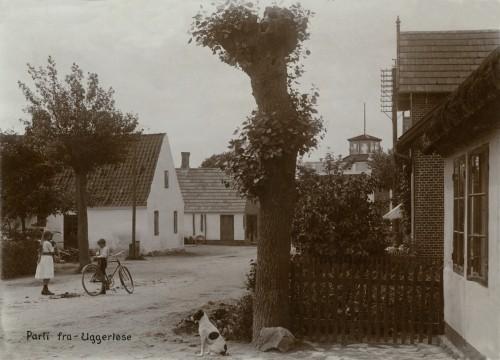 Hovedgaden ca. 1900 - Billede 20 Huset tv. var byens smedje. Tårnet var urmagerens på Hovedgaden 31. Huset th. er nedrevet. Her ligger nu Hovedgaden 24 ved nedkørslen til Toftegårdsvej. Vi ved ikke hvad hunden hed.